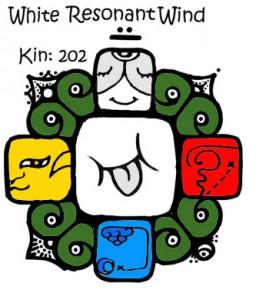 Kin 202 Beli Rezonantni Vetar