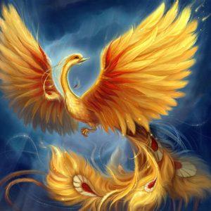 30 lunarni dan, zlatni labud