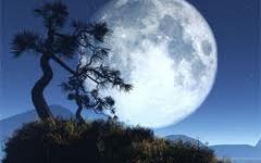 Uživajte u Super Mesecu