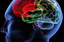 Trening Neurofidbek protokoli