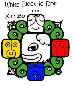 Kin 250, Beli Elektricni Pas